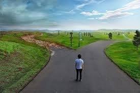 escolher-caminho-148-800x568.jpg